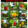 Aji Charapita,10 SEMILLAS,SEEDS,Capsicum frutescens,cosecha propia (129)